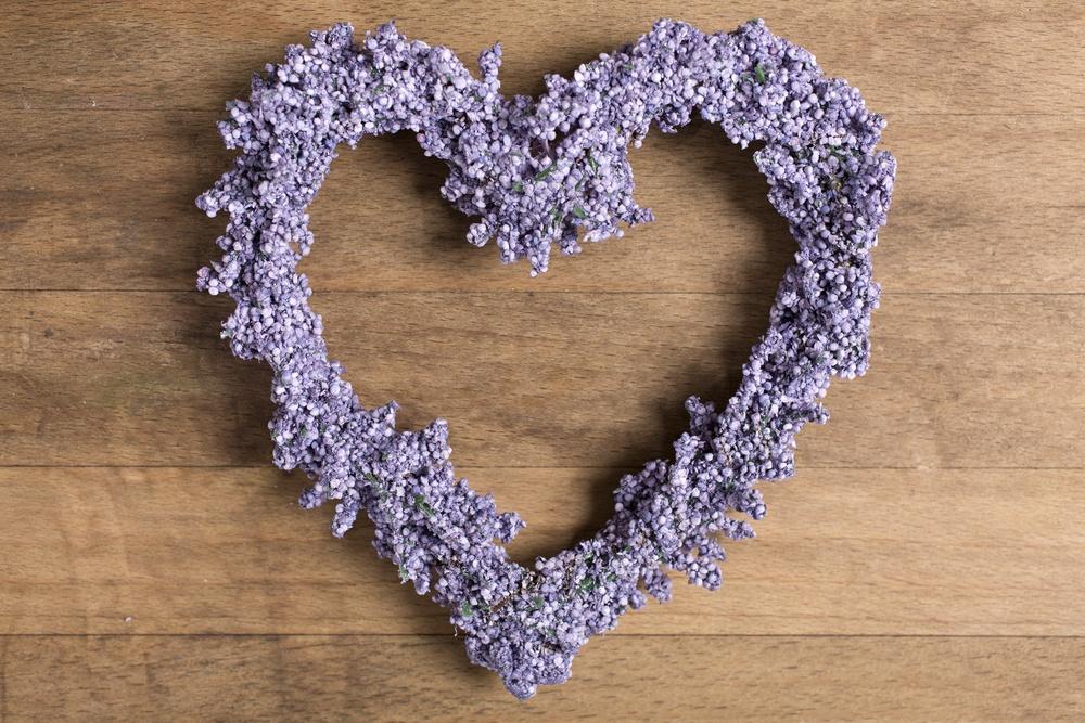 Fresh lavender in a heart shape design-2