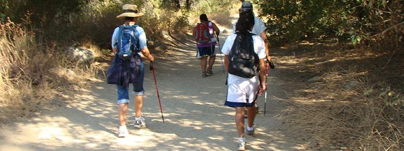 800x300-hikers-1.jpg